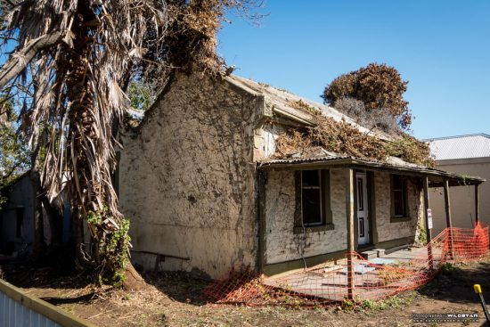 Urban Exploring The Tree House — Awesome Adelaide