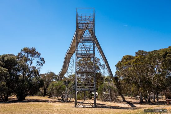 Urban Exploring Puzzle Park — Awesome Adelaide