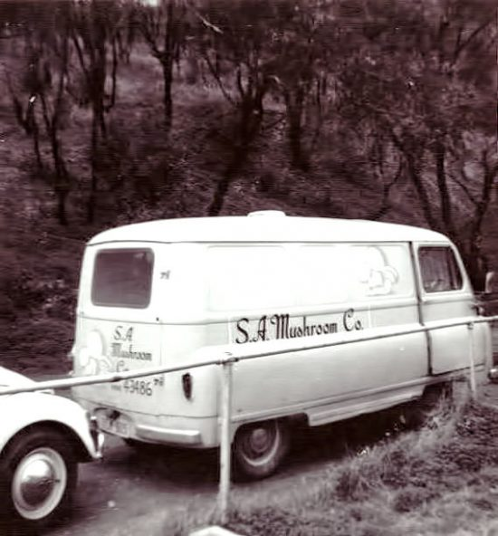 Original van with S.A. Mushroom Co. in italics. (Source: Supplied)